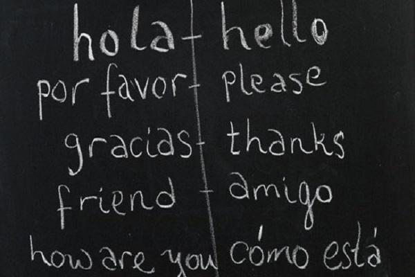 bilingual (1)