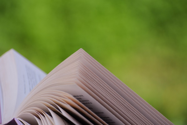 My #1 Tip For Getting Kids To Read Daily (Without Nagging From You!)